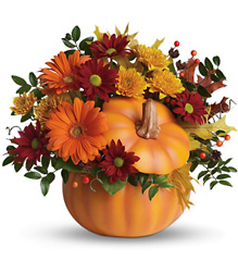 Teleflora's Country Pumpkin from Swindler and Sons Florists in Wilmington, OH