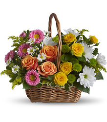 Sweet Tranquility Basket from Swindler and Sons Florists in Wilmington, OH