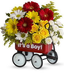 Baby's Wow Wagon by Teleflora from Swindler and Sons Florists in Wilmington, OH