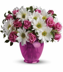 Teleflora's Pink Daisy Delight from Swindler and Sons Florists in Wilmington, OH
