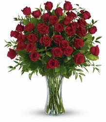 Breathtaking Beauty - 3 Doz Red Roses from Swindler and Sons Florists in Wilmington, OH
