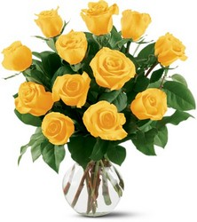 12 Yellow Roses from Swindler and Sons Florists in Wilmington, OH