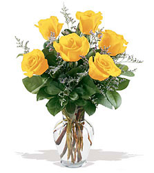 6 Yellow Roses from Swindler and Sons Florists in Wilmington, OH