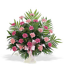 Funeral Basket Pink Carnations from Swindler and Sons Florists in Wilmington, OH
