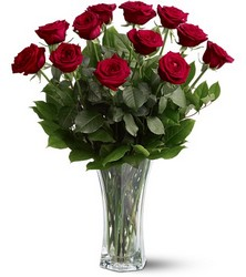 A Dozen Red Roses from Swindler and Sons Florists in Wilmington, OH