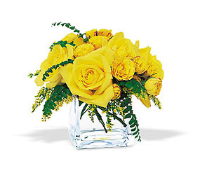 Yellow Rose Bravo! from Swindler and Sons Florists in Wilmington, OH